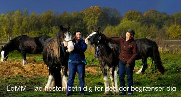 EqMM_lad_hesten_befri_dig_for_det_der_begr_nser_dig1368703582